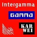 www.intergamma.nl